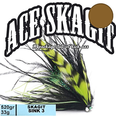 Ace Skagit Sink3